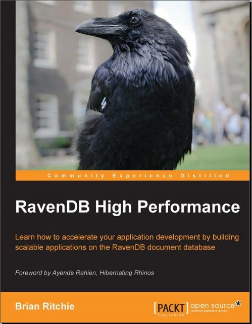 High Performance RavenDb